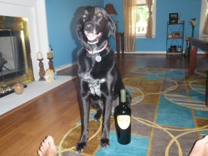 Play time for Lucy Dog (The Man's parents have 2 dogs!) and wine time for mommy!